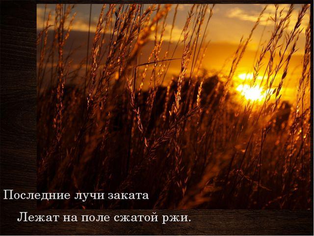 Последние лучи заката Лежат на поле сжатой ржи.