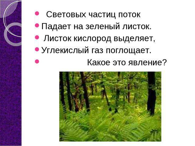 Световых частиц поток Падает на зеленый листок. Листок кислород выделяет, Уг...