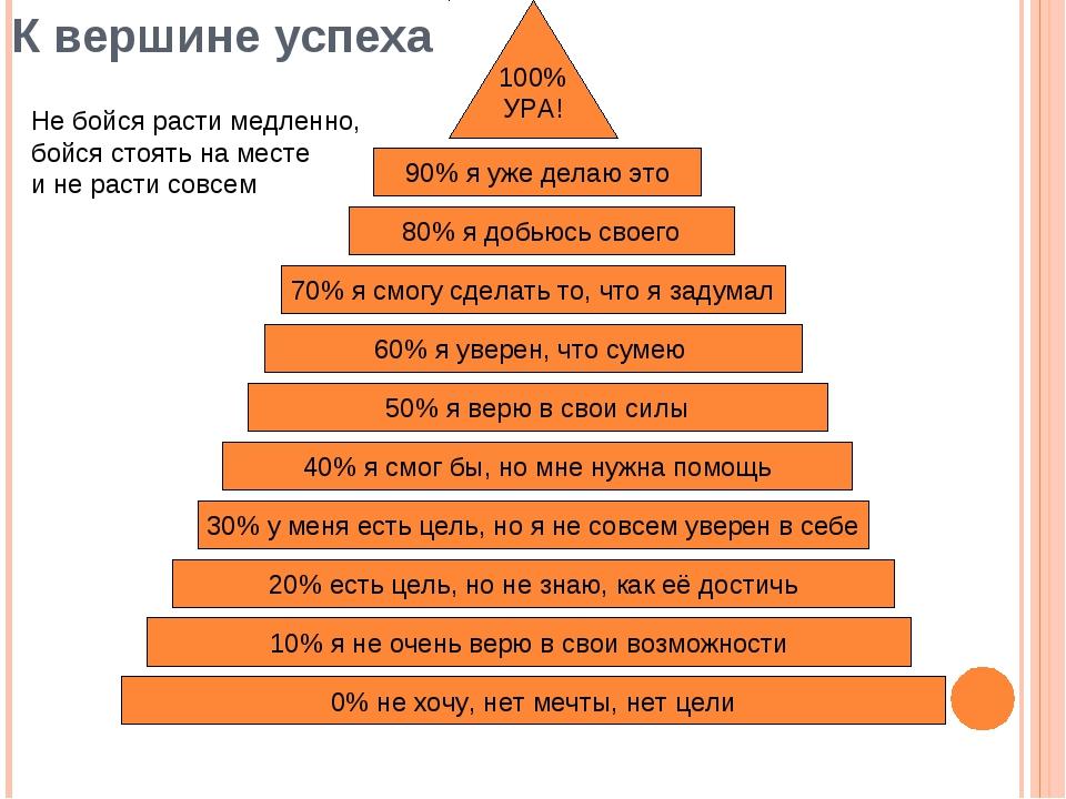 К вершине успеха 0% не хочу, нет мечты, нет цели 30% у меня есть цель, но я н...