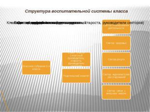 Структура воспитательной системы класса