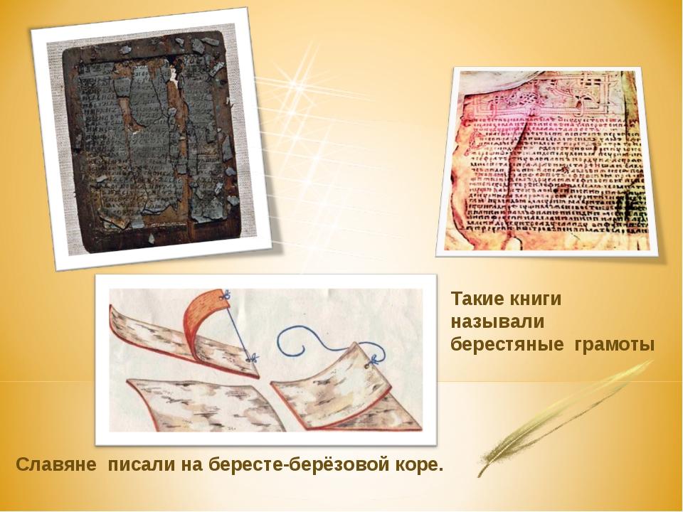 Славяне писали на бересте-берёзовой коре. Такие книги называли берестяные гр...