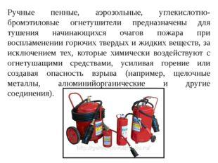 Ручные пенные, аэрозольные, углекислотно-бромэтиловые огнетушители предназнач