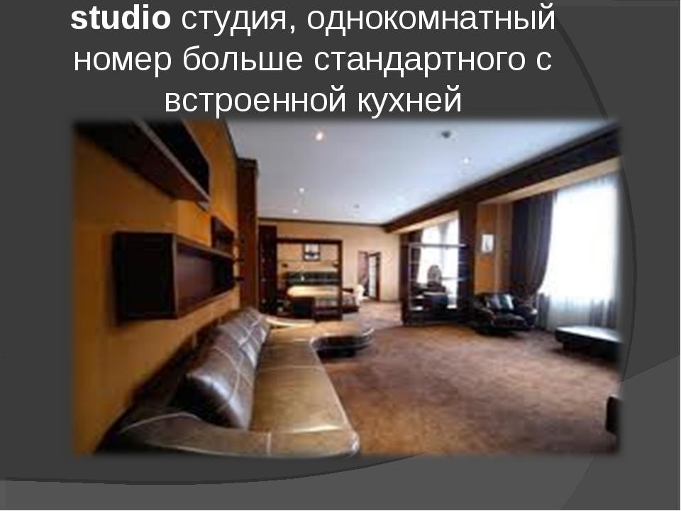 studio студия, однокомнатный номер больше стандартного c встроенной кухней