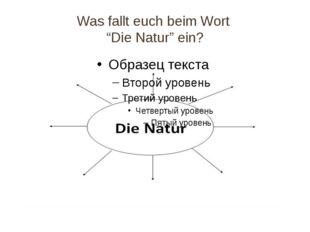 """Was fallt euch beim Wort """"Die Natur"""" ein?"""