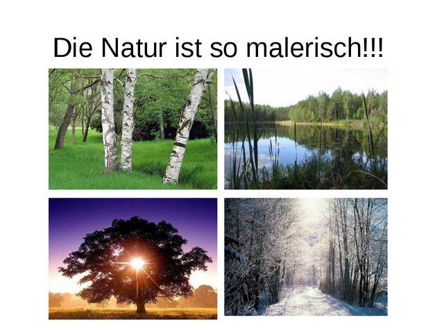 Die Natur ist so malerisch!!!