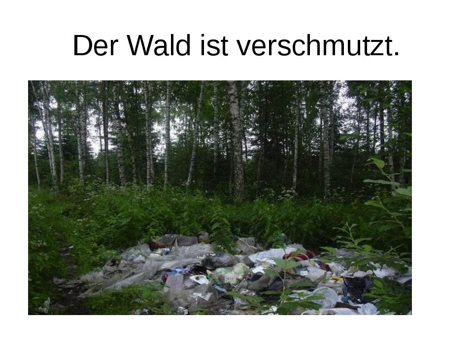 Der Wald ist verschmutzt.