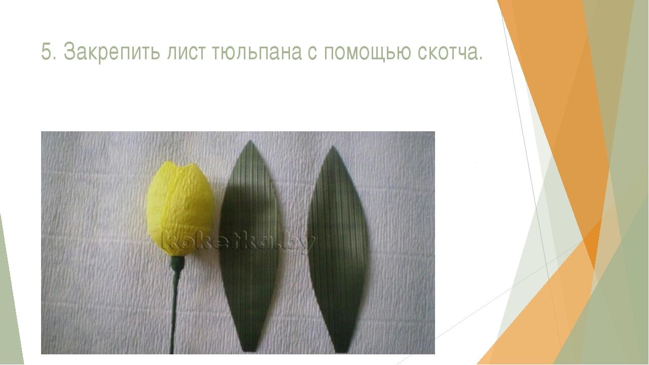 5. Закрепить лист тюльпана с помощью скотча.