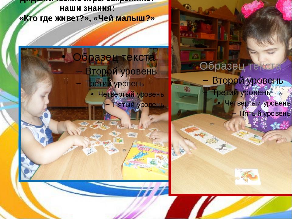 Дидактические игры закрепляют наши знания: «Кто где живет?», «Чей малыш?»