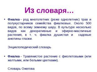 Из словаря… Фиалка- род многолетних (реже однолетних) трав и полукустарников