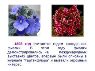 1893 год считается годом «рождения» фиалки. В этом году фиалки демонстрирова