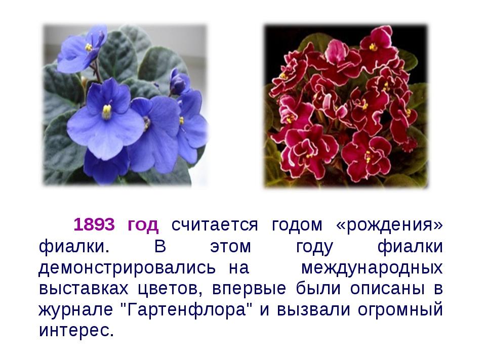1893 год считается годом «рождения» фиалки. В этом году фиалки демонстрирова...