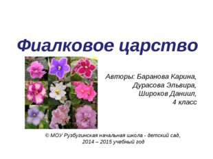Фиалковое царство Авторы: Баранова Карина, Дурасова Эльвира, Широков Даниил,