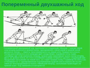 Попеременный двухшажный ход Попеременный двухшажный ход. выполняется следующи