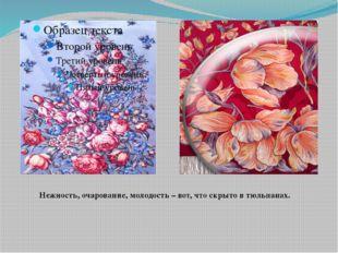 Нежность, очарование, молодость – вот, что скрыто в тюльпанах.