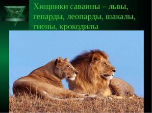 Хищники саванны – львы, гепарды, леопарды, шакалы, гиены, крокодилы