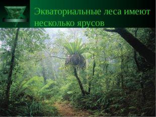 Экваториальные леса имеют несколько ярусов
