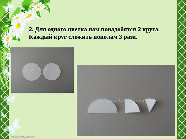 2. Для одного цветка нам понадобятся 2 круга. Каждый круг сложить пополам 3 р...