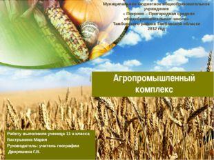 Агропромышленный комплекс Работу выполнила ученица 11 а класса Бастрыкина Мар