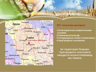 Село Покрово-Пригородное ЭГП села очень выгодное: 1.Благоприятные климатическ