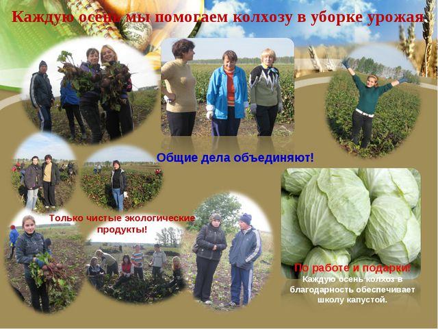 Каждую осень мы помогаем колхозу в уборке урожая. По работе и подарки! Каждую...