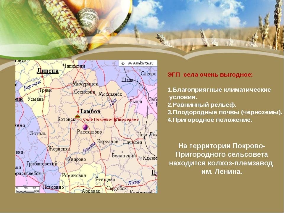 Село Покрово-Пригородное ЭГП села очень выгодное: 1.Благоприятные климатическ...