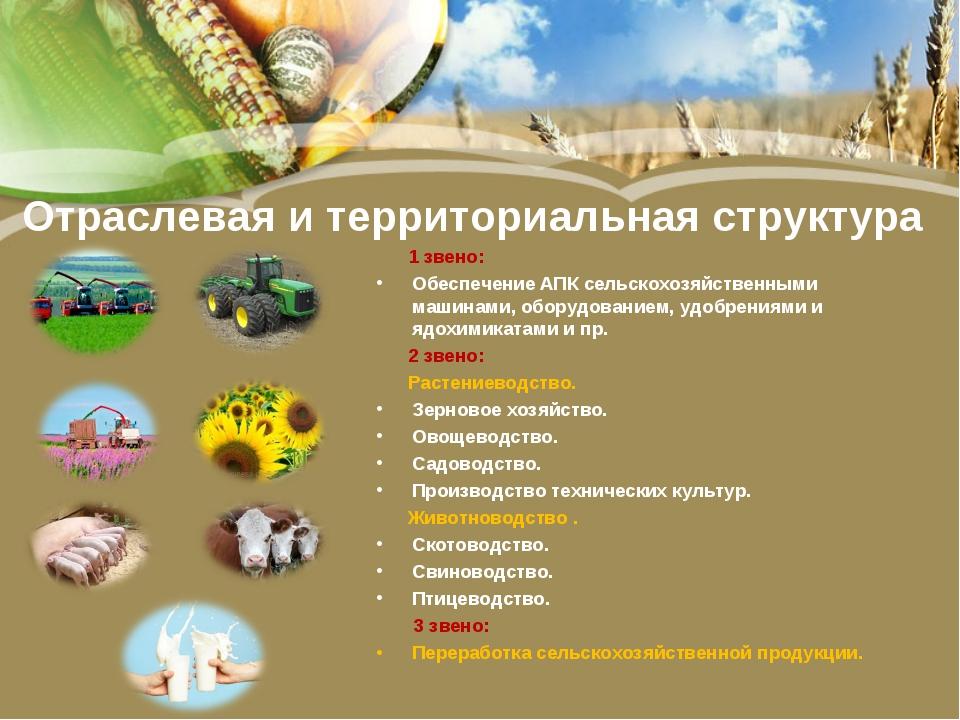 Отраслевая и территориальная структура 1 звено: Обеспечение АПК сельскохозяйс...