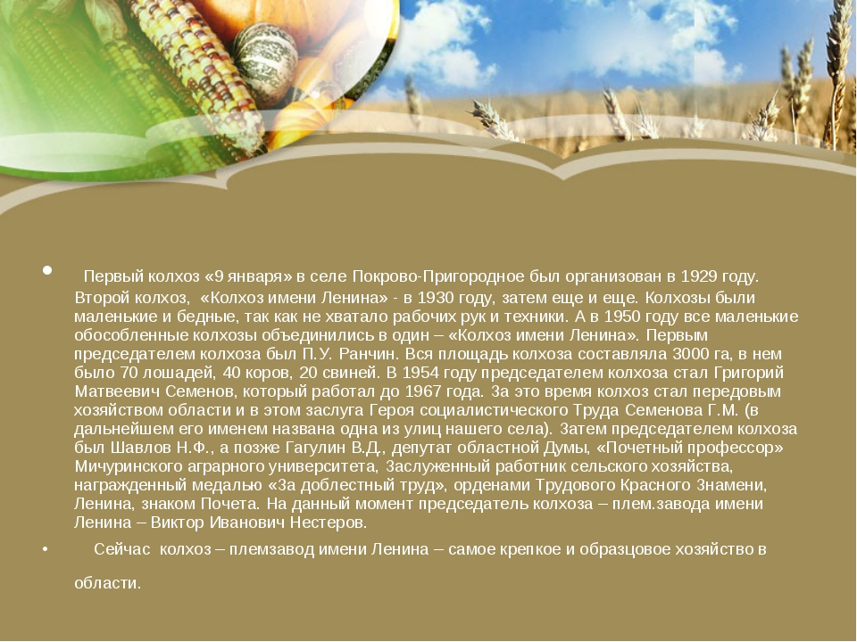 Первый колхоз «9 января» в селе Покрово-Пригородное был организован в 1929 г...
