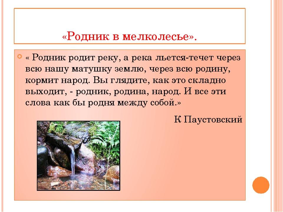 «Родник в мелколесье». « Родник родит реку, а река льется-течет через всю наш...