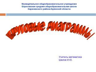 Муниципальное общеобразовательное учреждение Березовская средняя общеобразова