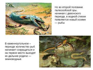 Но во второй половине палеозойской эры, начиная с девонского периода, в водно