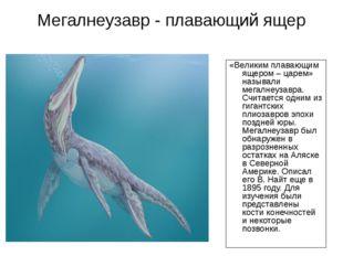 Мегалнеузавр - плавающий ящер «Великим плавающим ящером – царем» называли мег