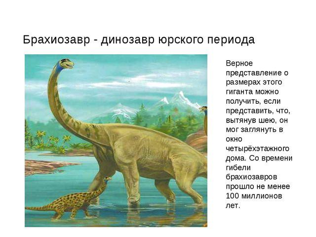 Верное представление о размерах этого гиганта можно получить, если представит...