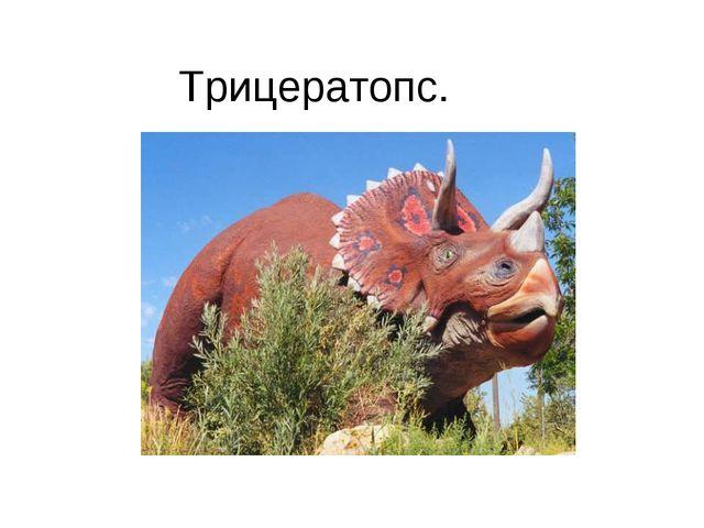 Трицератопс.