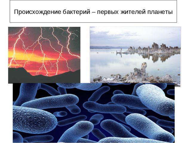 Происхождение бактерий – первых жителей планеты