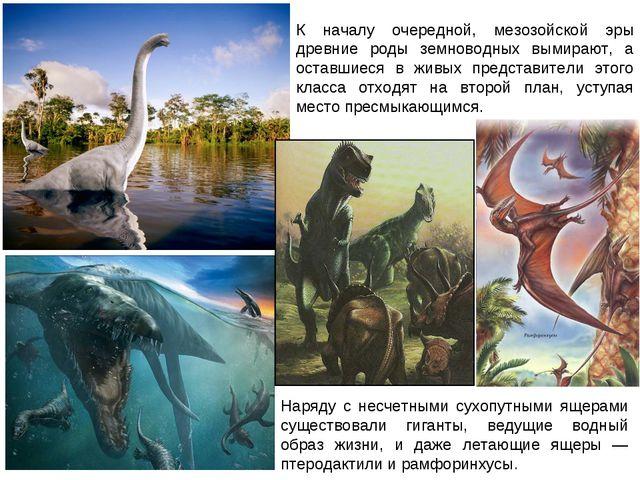 К началу очередной, мезозойской эры древние роды земноводных вымирают, а оста...