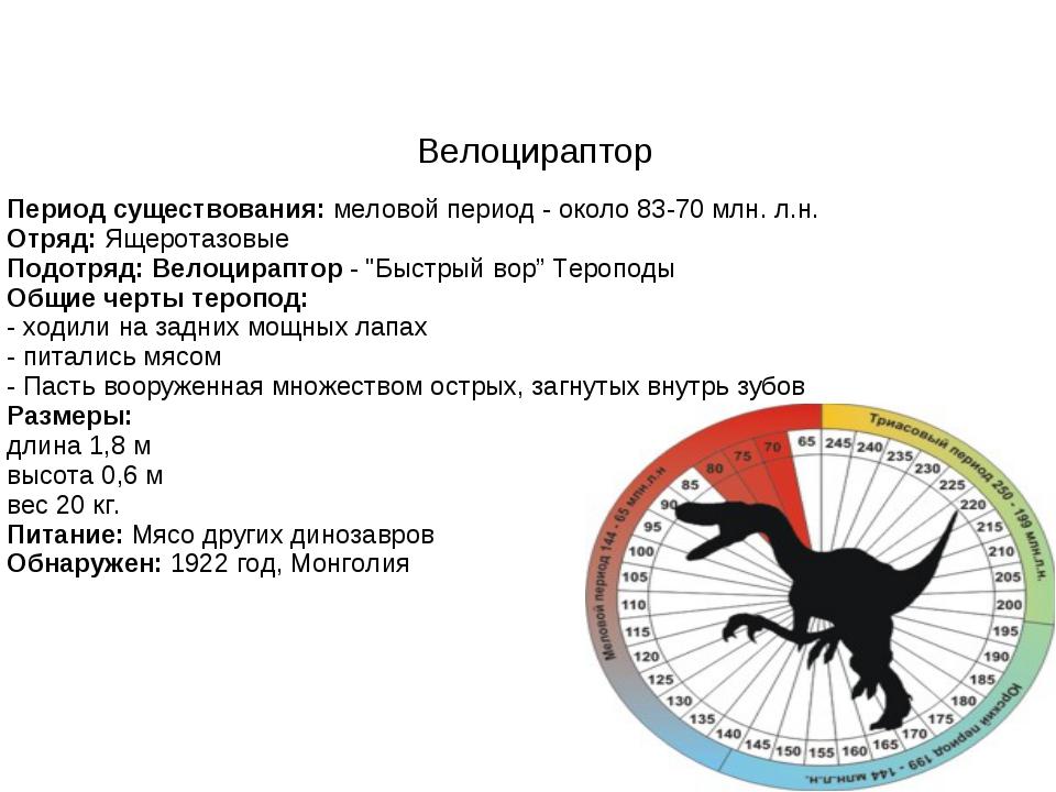 Велоцираптор Период существования:меловой период - около 83-70 млн. л.н. Отр...