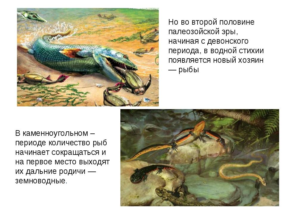 Но во второй половине палеозойской эры, начиная с девонского периода, в водно...