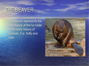 THE BEAVER The beaver represents the importance of the fur trade in the early