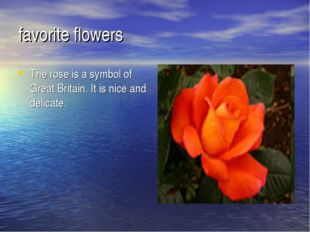 favorite flowers The rose is a symbol of Great Britain. It is nice and delica