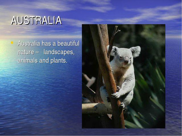 AUSTRALIA Australia has a beautiful nature – landscapes, animals and plants.