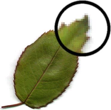 hello_html_m7fa0bcd1.png