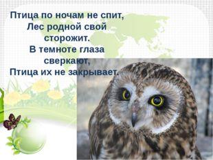 Птица по ночам не спит, Лес родной свой сторожит. В темноте глаза сверкают,