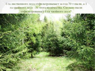 1 га лиственного леса отфильтровывает за год 70 т пыли, а 1 га хвойного леса