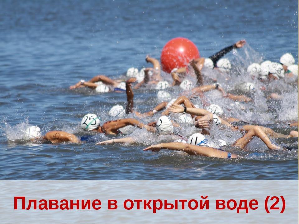 Плавание в открытой воде (2)