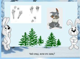 Чей след, если это заяц? Чей след, если это заяц?