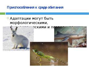 Приспособления к среде обитания Адаптации могут быть морфологическими, физиол