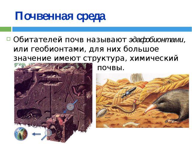 Почвенная среда Обитателей почв называют эдафобионтами, или геобионтами, для...