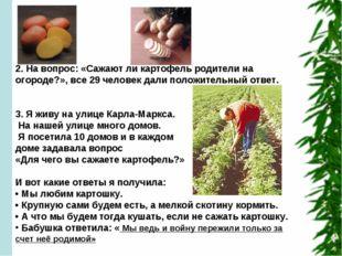 2. На вопрос: «Сажают ли картофель родители на огороде?», все 29 человек дал