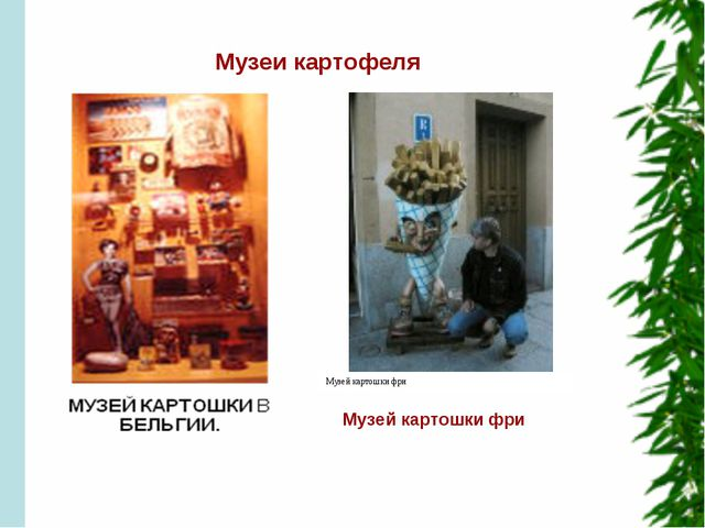 Музеи картофеля Музей картошки фри