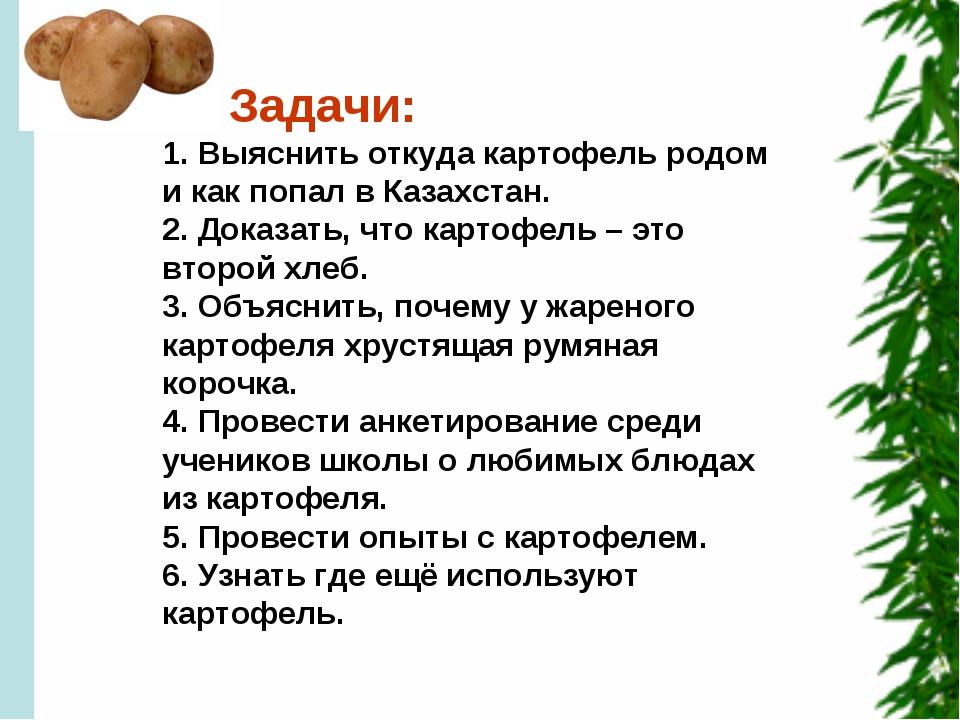 Задачи: 1. Выяснить откуда картофель родом и как попал в Казахстан. 2. Доказ...